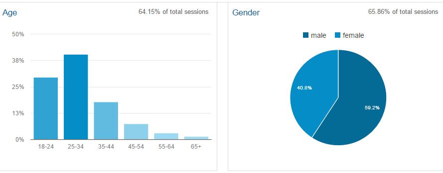 Google Analytics Demographics Overview
