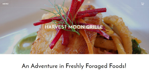 HARVEST MOON GRILLE
