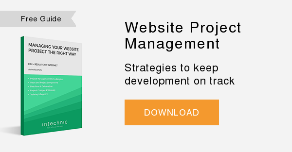 Free Guide   Website Project Management  Strategies to keep development on track   DOWNLOAD