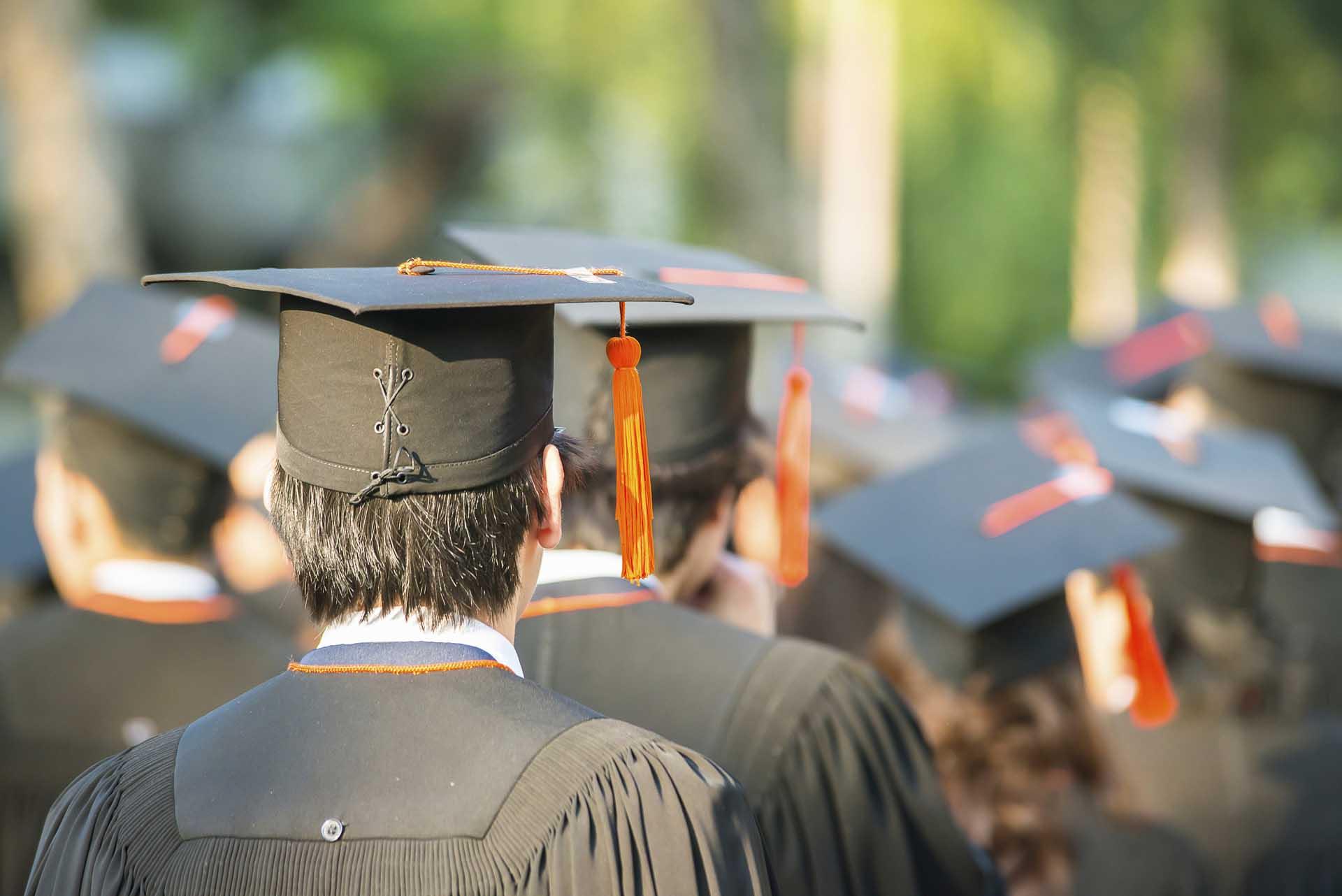 Best School Website Designs for Colleges and Universities